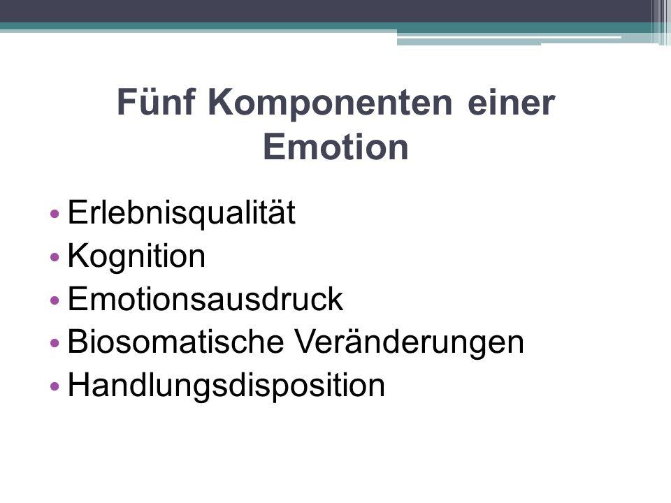 Fünf Komponenten einer Emotion Erlebnisqualität Kognition Emotionsausdruck Biosomatische Veränderungen Handlungsdisposition