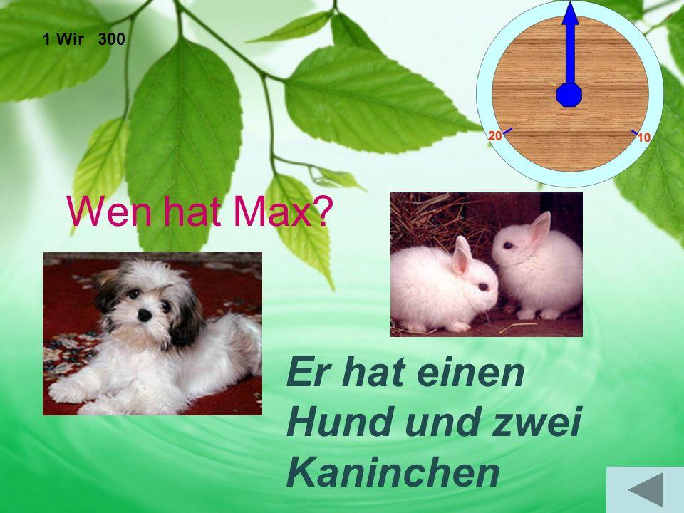1 Wir 300 Wen hat Max Er hat einen Hund und zwei Kaninchen