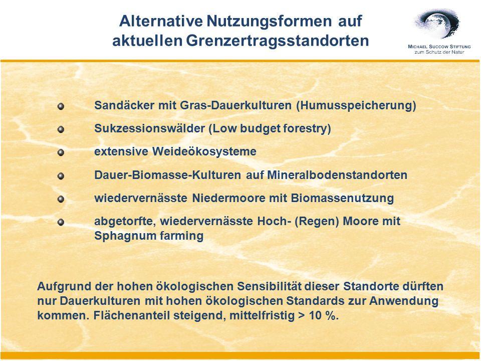 Sandäcker mit Gras-Dauerkulturen (Humusspeicherung) Sukzessionswälder (Low budget forestry) extensive Weideökosysteme Dauer-Biomasse-Kulturen auf Mine