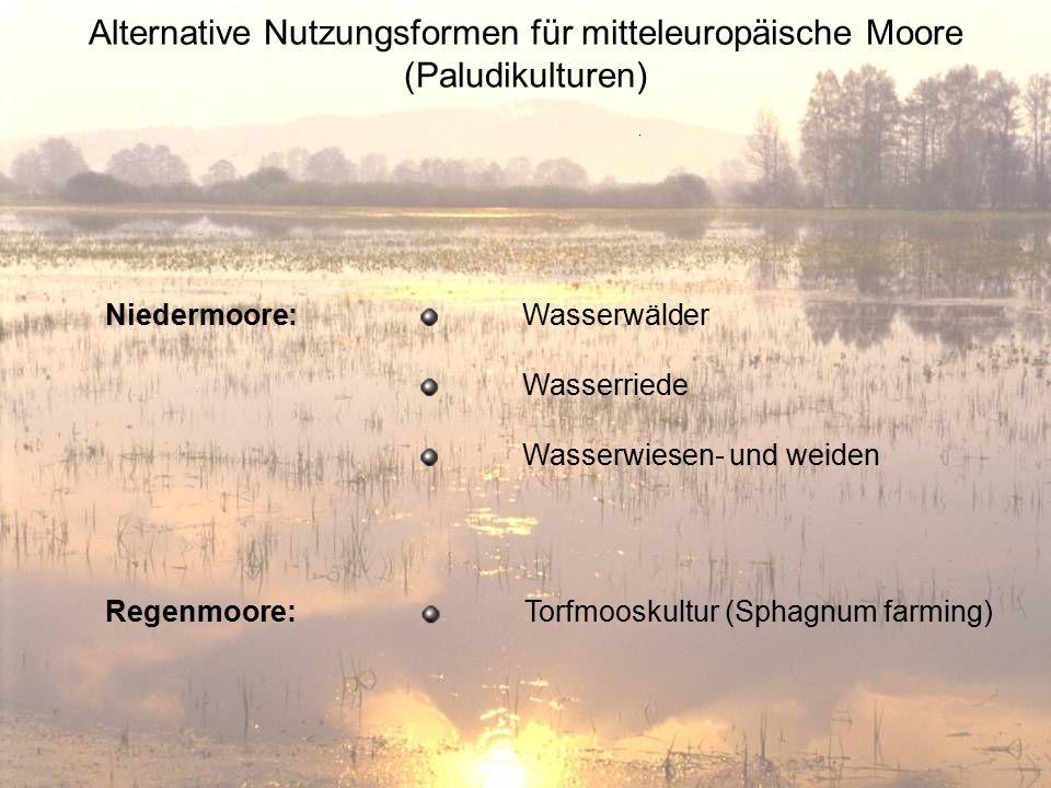 Alternative Nutzungsformen für mitteleuropäische Moore (Paludikulturen) Wasserwälder Wasserriede Wasserwiesen- und weiden Niedermoore: Regenmoore: Tor