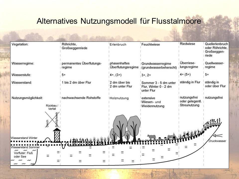 Alternatives Nutzungsmodell für Flusstalmoore