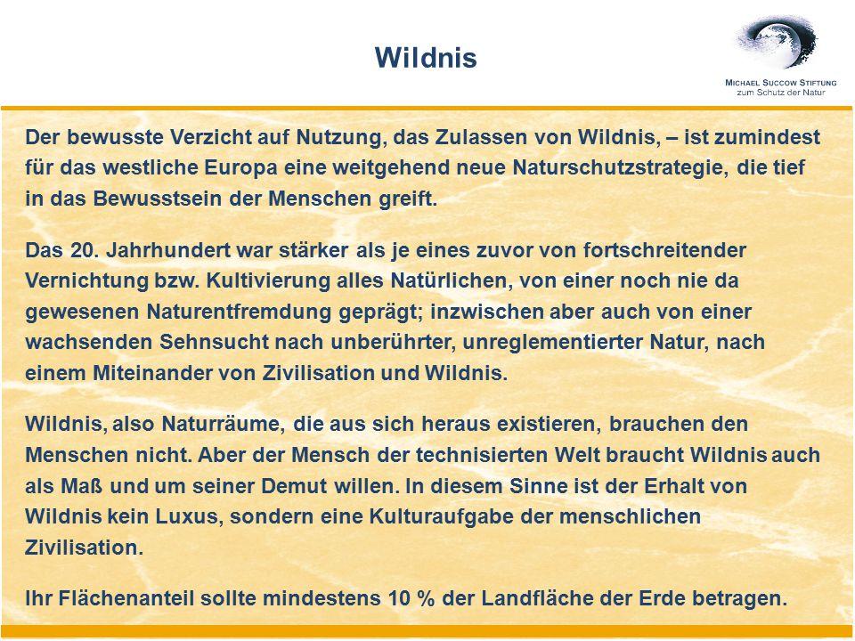 Der bewusste Verzicht auf Nutzung, das Zulassen von Wildnis, – ist zumindest für das westliche Europa eine weitgehend neue Naturschutzstrategie, die t