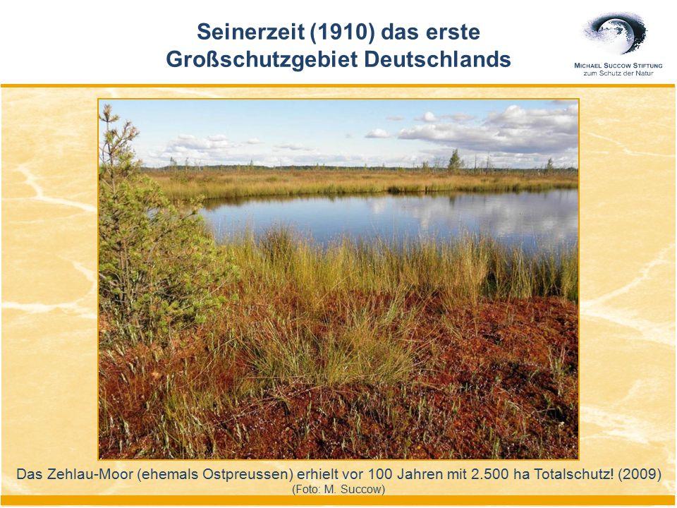 Das Zehlau-Moor (ehemals Ostpreussen) erhielt vor 100 Jahren mit 2.500 ha Totalschutz! (2009) (Foto: M. Succow) Seinerzeit (1910) das erste Großschutz