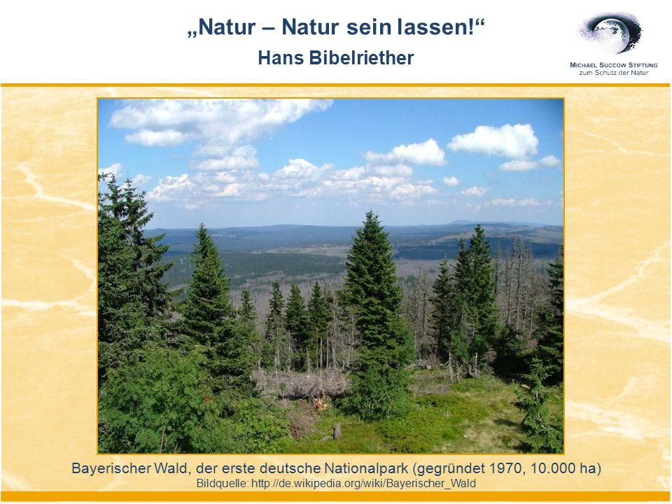 """Bayerischer Wald, der erste deutsche Nationalpark (gegründet 1970, 10.000 ha) Bildquelle: http://de.wikipedia.org/wiki/Bayerischer_Wald """"Natur – Natur"""