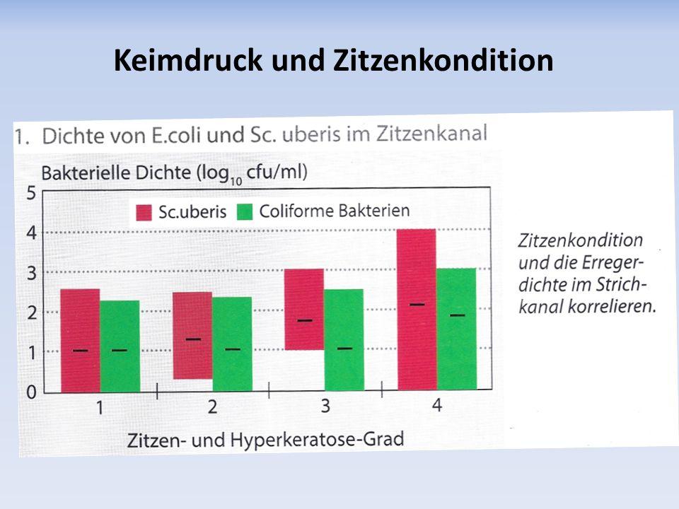 Keimdruck und Zitzenkondition