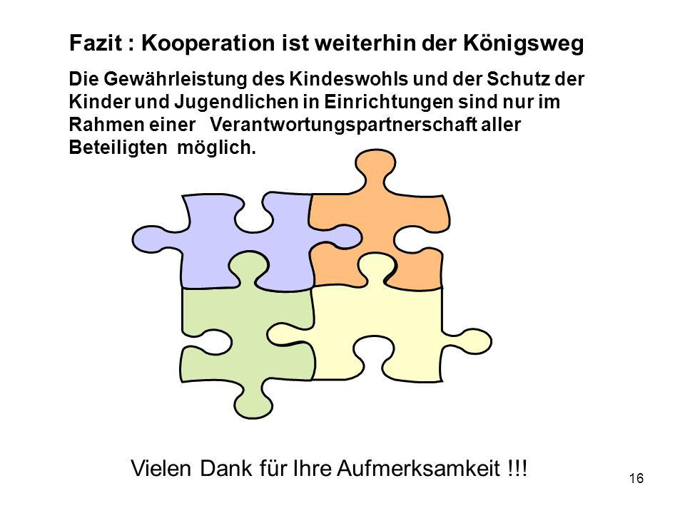 16 Fazit : Kooperation ist weiterhin der Königsweg Die Gewährleistung des Kindeswohls und der Schutz der Kinder und Jugendlichen in Einrichtungen sind nur im Rahmen einer Verantwortungspartnerschaft aller Beteiligten möglich.