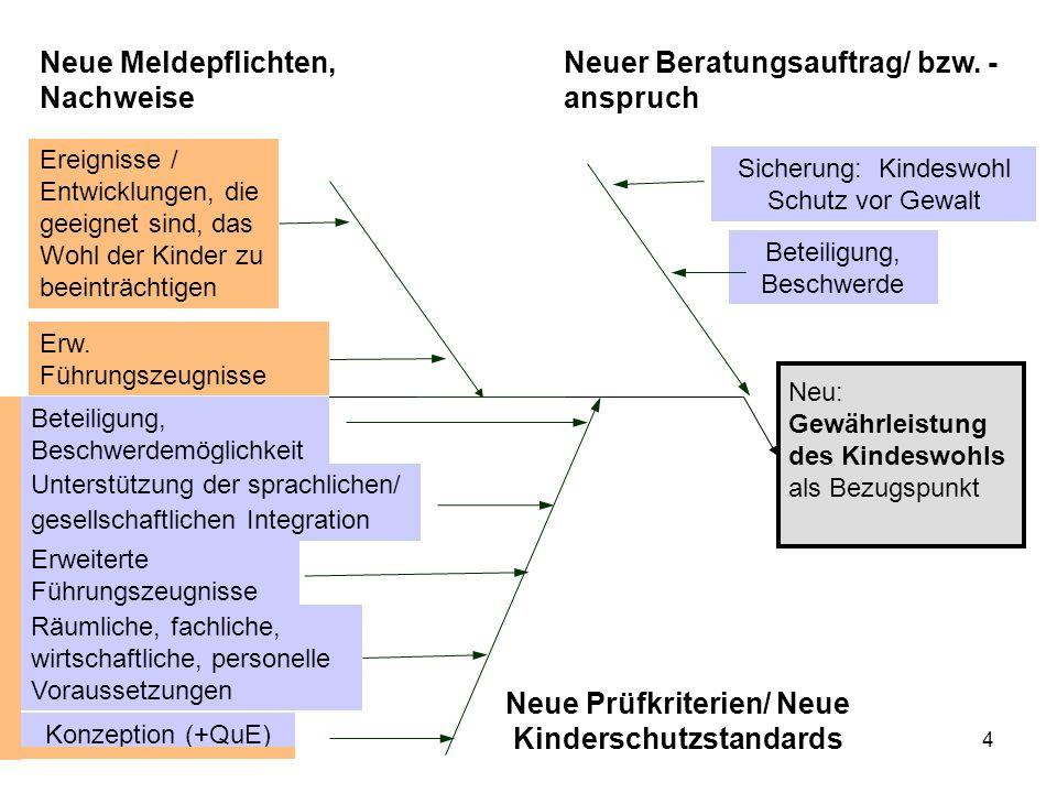 4 Neu: Gewährleistung des Kindeswohls als Bezugspunkt Neue Prüfkriterien/ Neue Kinderschutzstandards Neuer Beratungsauftrag/ bzw.