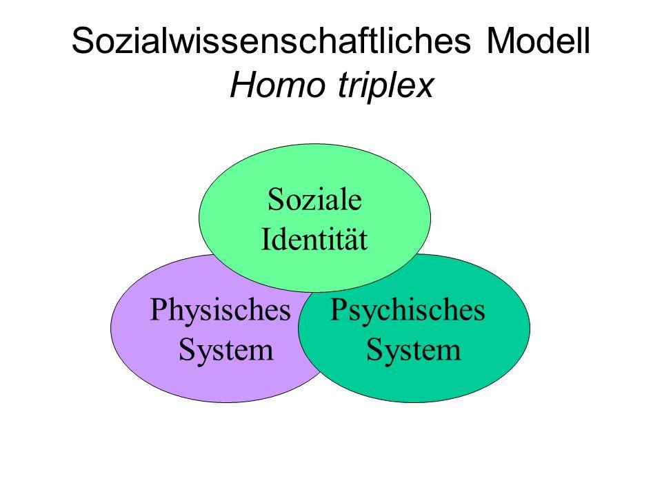 Sozialwissenschaftliches Modell Homo triplex Physisches System Psychisches System Soziale Identität