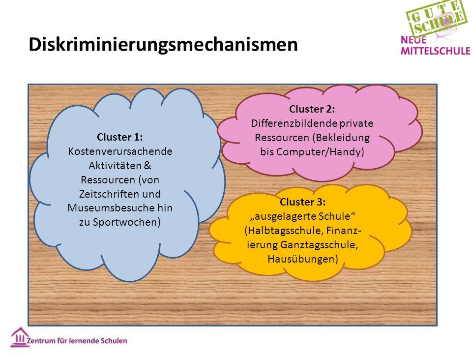Diskriminierungsmechanismen Cluster 1: Kostenverursachende Aktivitäten & Ressourcen (von Zeitschriften und Museumsbesuche hin zu Sportwochen) Cluster