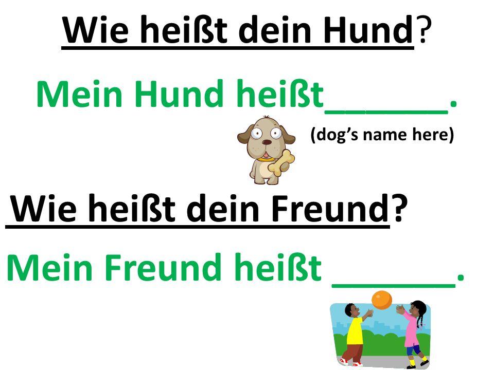 Wie heißt dein Hund. Mein Hund heißt______. (dog's name here) Wie heißt dein Freund.