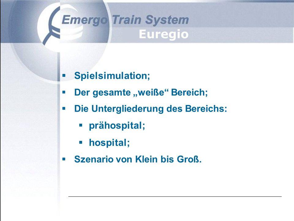 """ Spielsimulation;  Der gesamte """"weiße Bereich;  Die Untergliederung des Bereichs:  prähospital;  hospital;  Szenario von Klein bis Groß."""