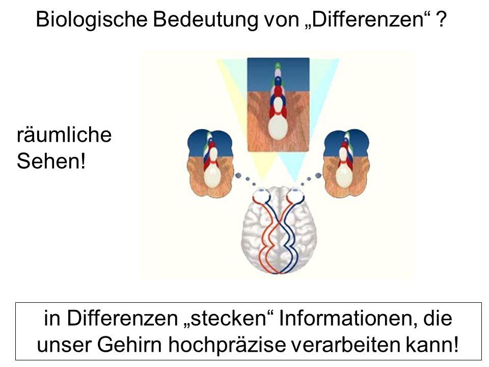 """Biologische Bedeutung von """"Differenzen ."""