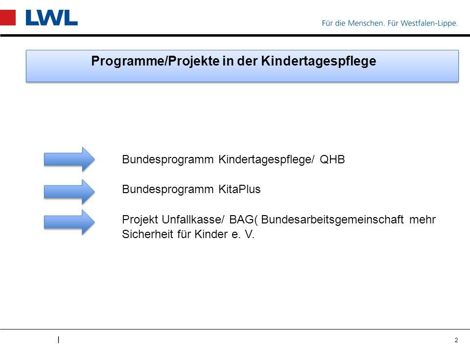 I Programme/Projekte in der Kindertagespflege Bundesprogramm Kindertagespflege/ QHB Bundesprogramm KitaPlus Projekt Unfallkasse/ BAG( Bundesarbeitsgemeinschaft mehr Sicherheit für Kinder e.