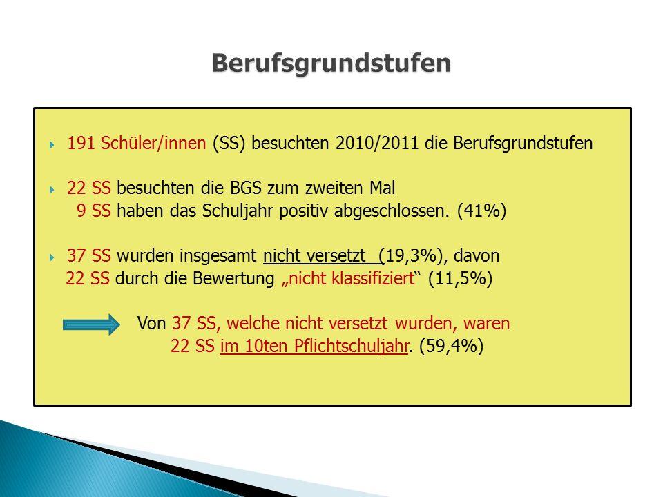  191 Schüler/innen (SS) besuchten 2010/2011 die Berufsgrundstufen  22 SS besuchten die BGS zum zweiten Mal 9 SS haben das Schuljahr positiv abgeschl