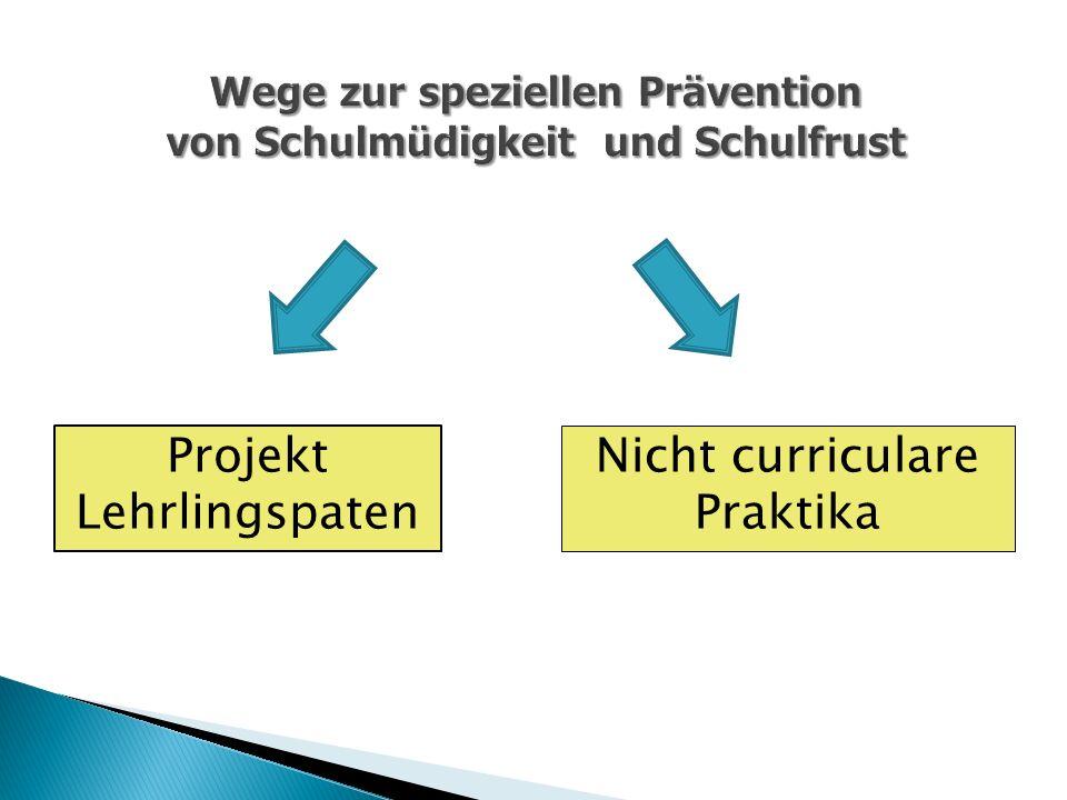 Projekt Lehrlingspaten Nicht curriculare Praktika