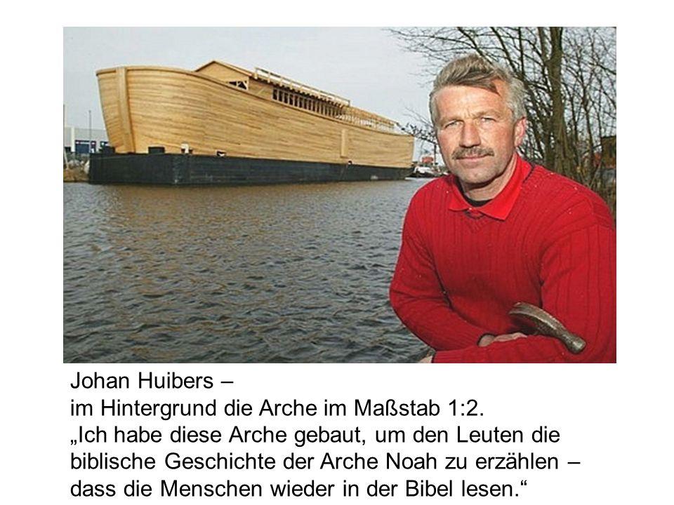 Ganz fertig ist der archaische Kahn zwar noch nicht, aber er schwimmt bereits im Hafen von Schagen, 55 km von Amsterdam.