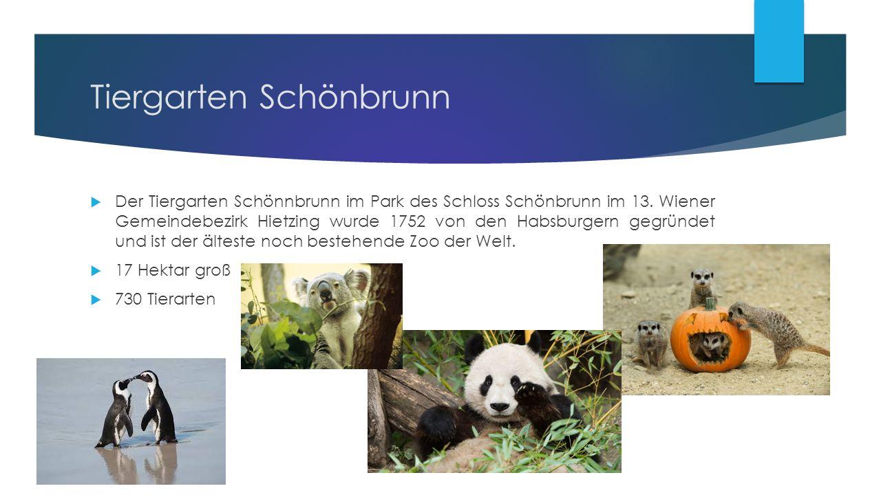 Tiergarten Schönbrunn  Der Tiergarten Schönnbrunn im Park des Schloss Schönbrunn im 13.