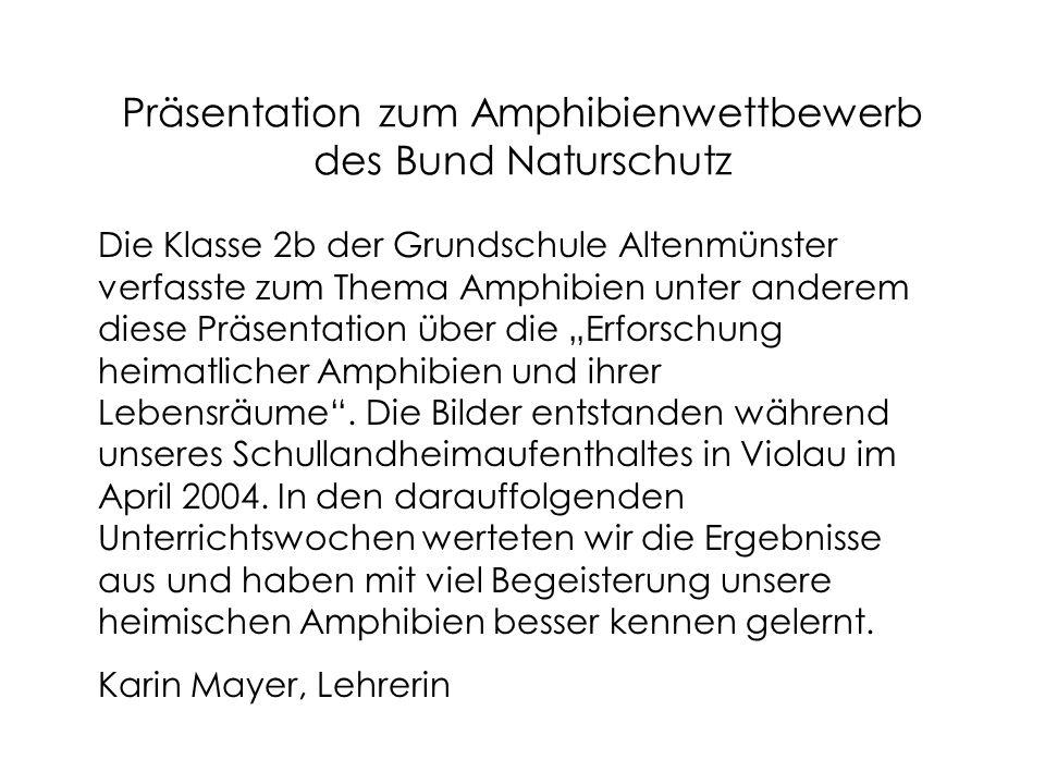 """Präsentation zum Amphibienwettbewerb des Bund Naturschutz Die Klasse 2b der Grundschule Altenmünster verfasste zum Thema Amphibien unter anderem diese Präsentation über die """"Erforschung heimatlicher Amphibien und ihrer Lebensräume ."""