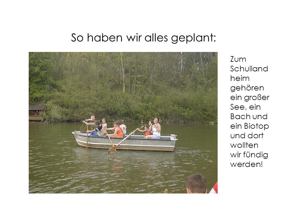 So haben wir alles geplant: Zum Schulland heim gehören ein großer See, ein Bach und ein Biotop und dort wollten wir fündig werden!