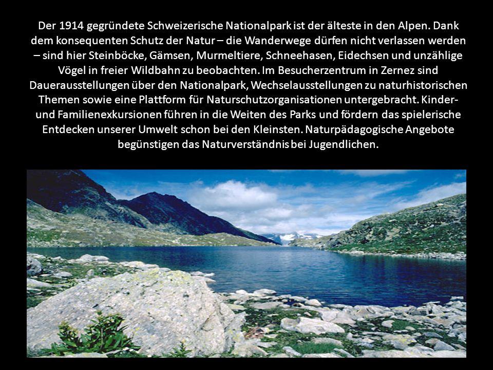 Der 1914 gegründete Schweizerische Nationalpark ist der älteste in den Alpen.