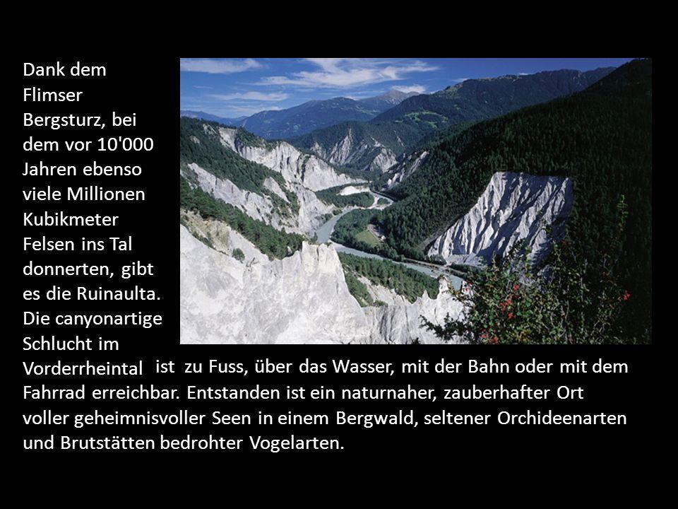 Dank dem Flimser Bergsturz, bei dem vor 10 000 Jahren ebenso viele Millionen Kubikmeter Felsen ins Tal donnerten, gibt es die Ruinaulta.