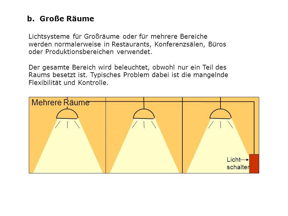 b. Große Räume Lichtsysteme für Großräume oder für mehrere Bereiche werden normalerweise in Restaurants, Konferenzsälen, Büros oder Produktionsbereich