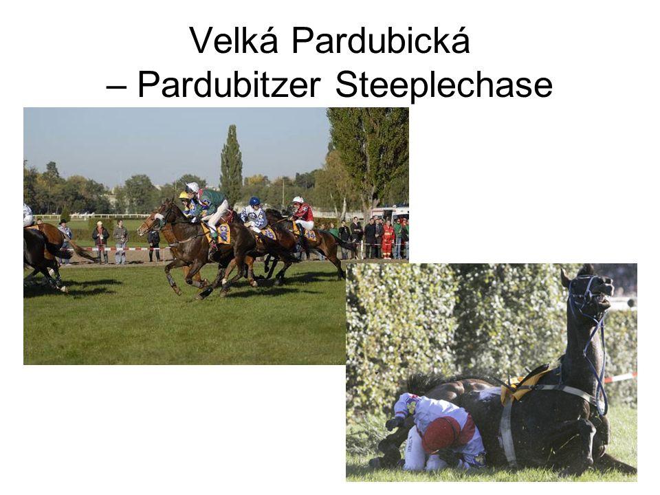 Velká Pardubická – Pardubitzer Steeplechase