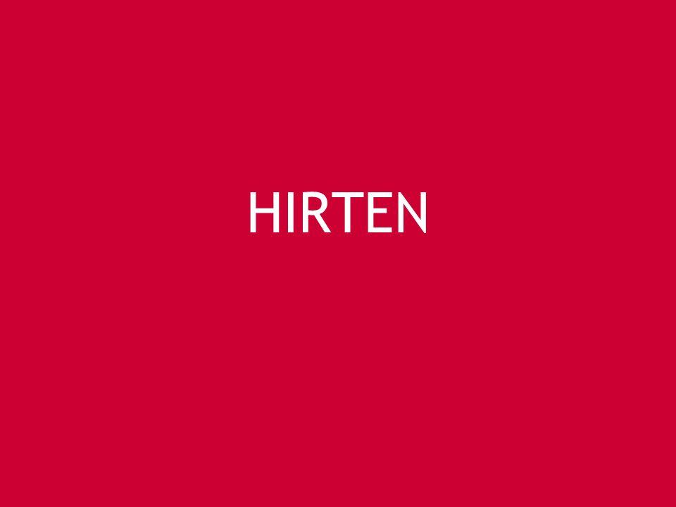 HIRTEN