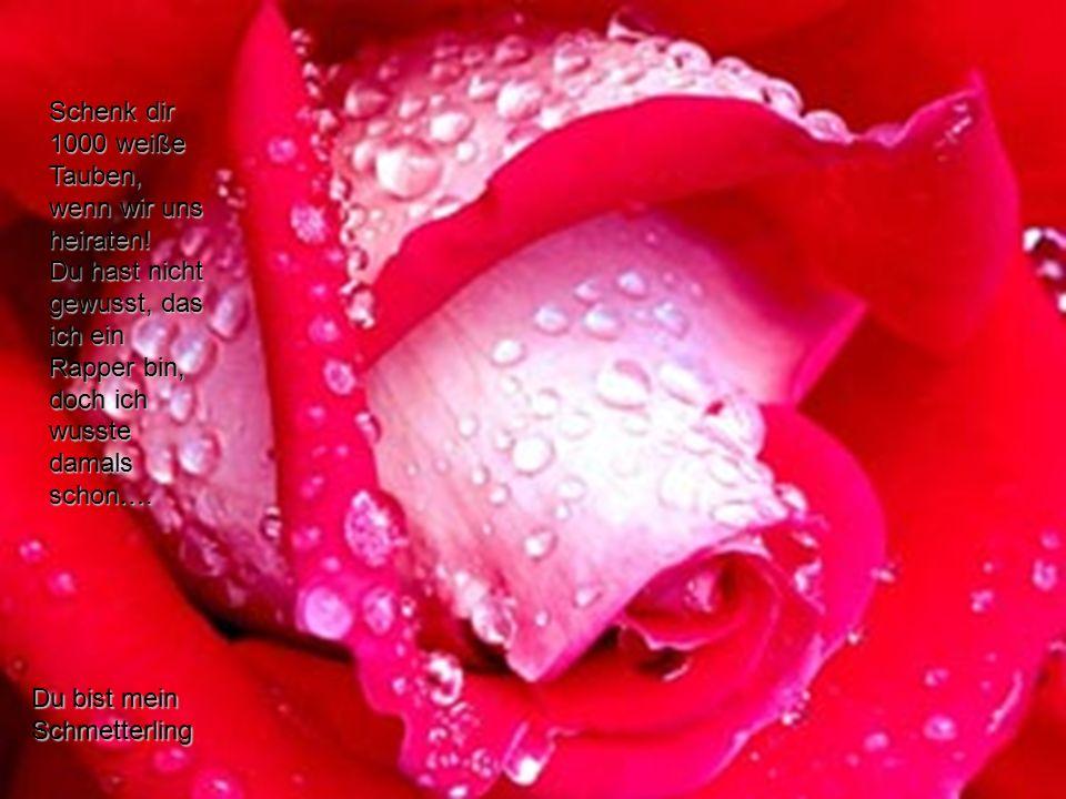 Du bist mein Schmetterling verteilt durch www.funmail2u.dewww.funmail2u.de Schenk dir 1000 weiße Tauben, wenn wir uns heiraten.