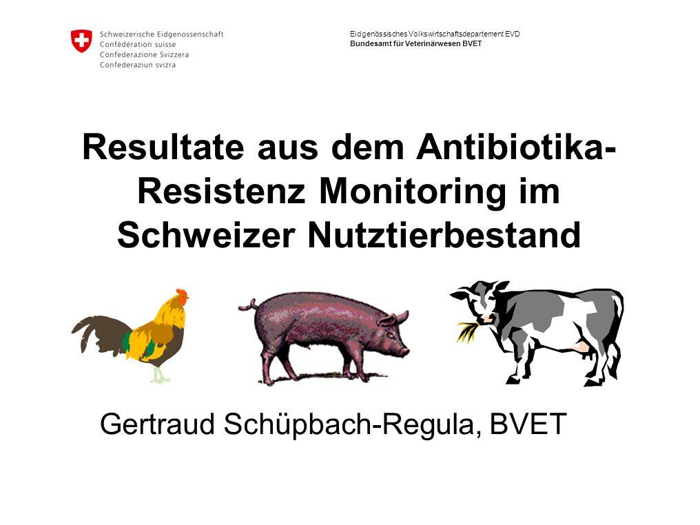 Eidgenössisches Volkswirtschaftsdepartement EVD Bundesamt für Veterinärwesen BVET Resultate aus dem Antibiotika- Resistenz Monitoring im Schweizer Nutztierbestand Gertraud Schüpbach-Regula, BVET