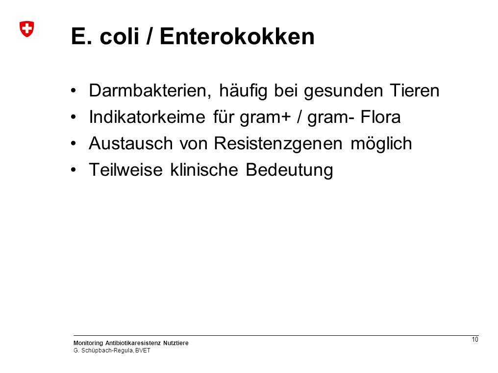 10 Monitoring Antibiotikaresistenz Nutztiere G. Schüpbach-Regula, BVET E.