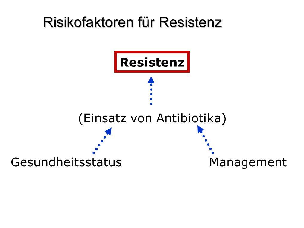 Risikofaktoren für Resistenz Resistenz (Einsatz von Antibiotika) Gesundheitsstatus Management
