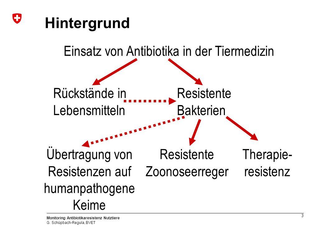 3 Monitoring Antibiotikaresistenz Nutztiere G.