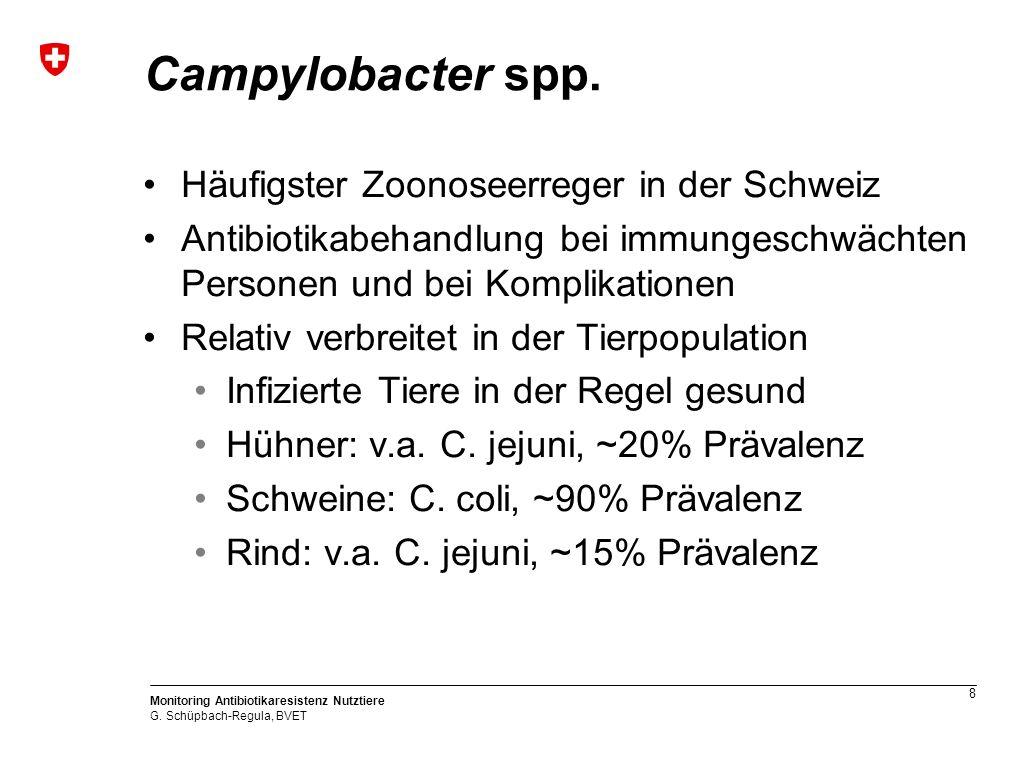 8 Monitoring Antibiotikaresistenz Nutztiere G. Schüpbach-Regula, BVET Campylobacter spp.