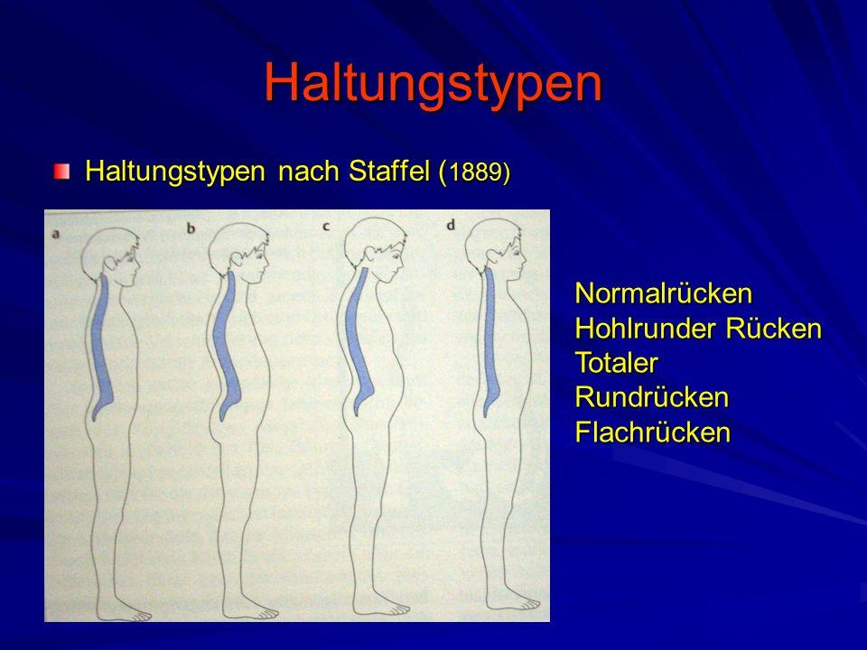 Haltungstypen Haltungstypen nach Staffel ( 1889) Normalrücken Hohlrunder Rücken Totaler Rundrücken Flachrücken