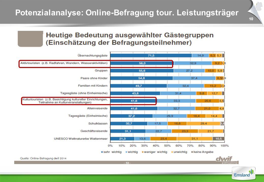 10 Potenzialanalyse: Online-Befragung tour. Leistungsträger