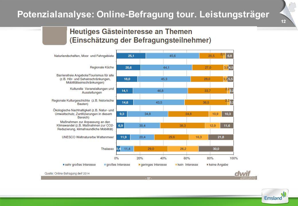 12 Potenzialanalyse: Online-Befragung tour. Leistungsträger