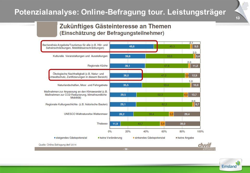 13 Potenzialanalyse: Online-Befragung tour. Leistungsträger