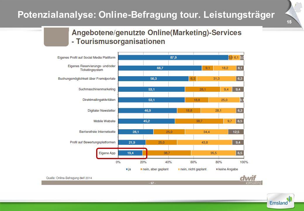 15 Potenzialanalyse: Online-Befragung tour. Leistungsträger