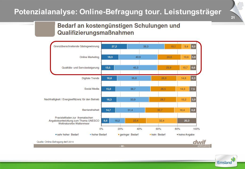 21 Potenzialanalyse: Online-Befragung tour. Leistungsträger