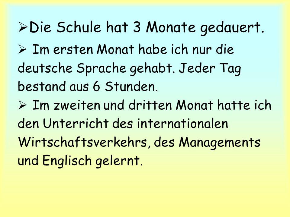  Die Schule hat 3 Monate gedauert.  Im ersten Monat habe ich nur die deutsche Sprache gehabt.