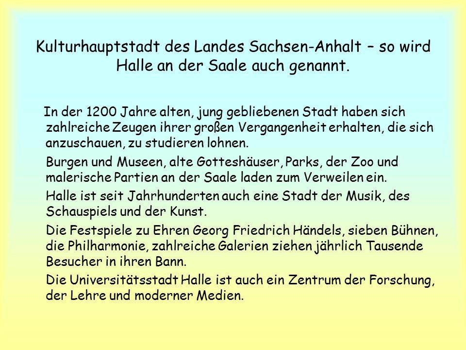 Kulturhauptstadt des Landes Sachsen-Anhalt – so wird Halle an der Saale auch genannt.
