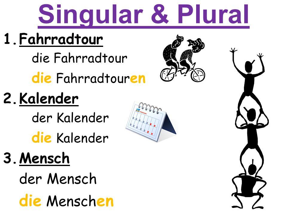 Singular & Plural 1.Fahrradtour die Fahrradtour die Fahrradtour en 2.Kalender der Kalender die Kalender 3.Mensch der Mensch die Mensch en