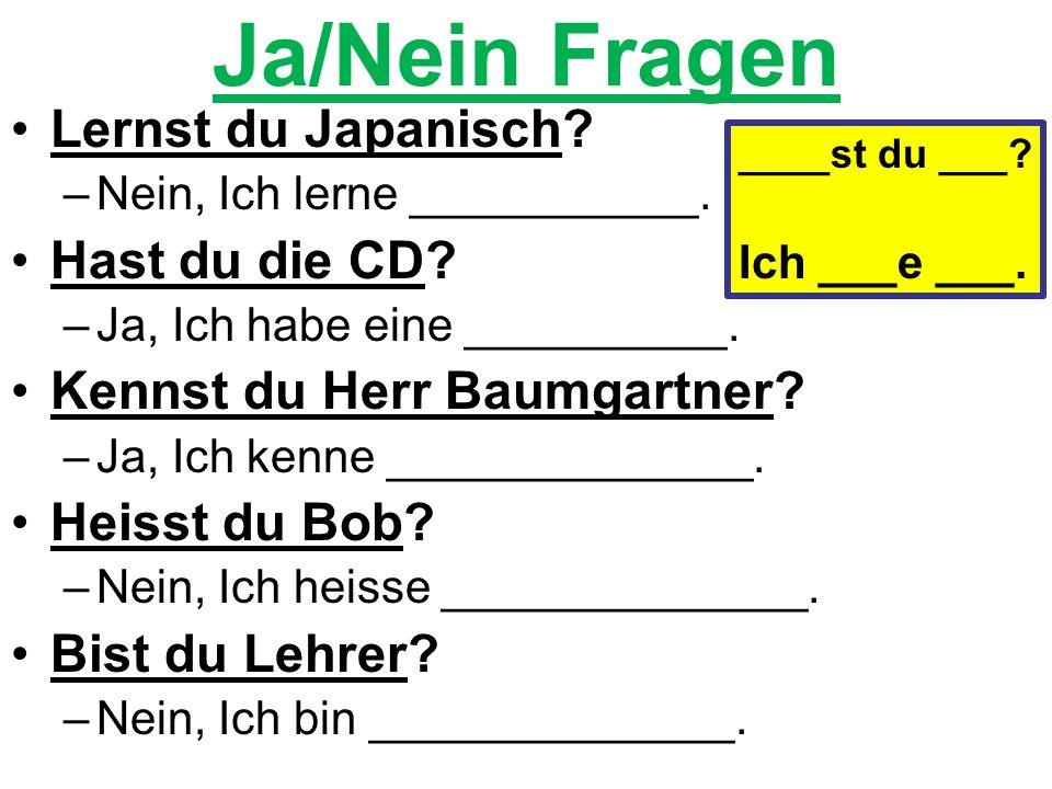 Ja/Nein Fragen Lernst du Japanisch. –Nein, Ich lerne ___________.