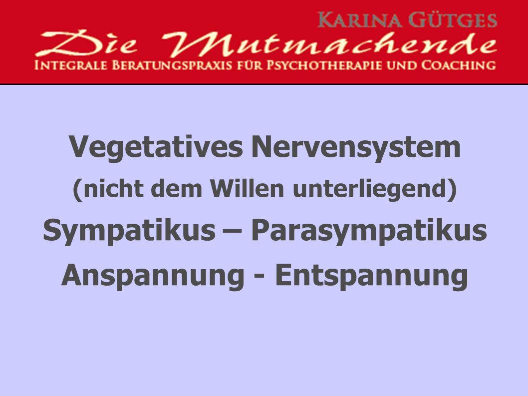Vegetatives Nervensystem (nicht dem Willen unterliegend) Sympatikus – Parasympatikus Anspannung - Entspannung