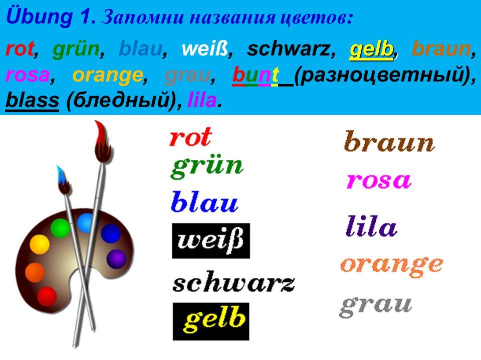 Übung 3.Расставь буквы в правильном порядке, чтоб получились названия цветов.