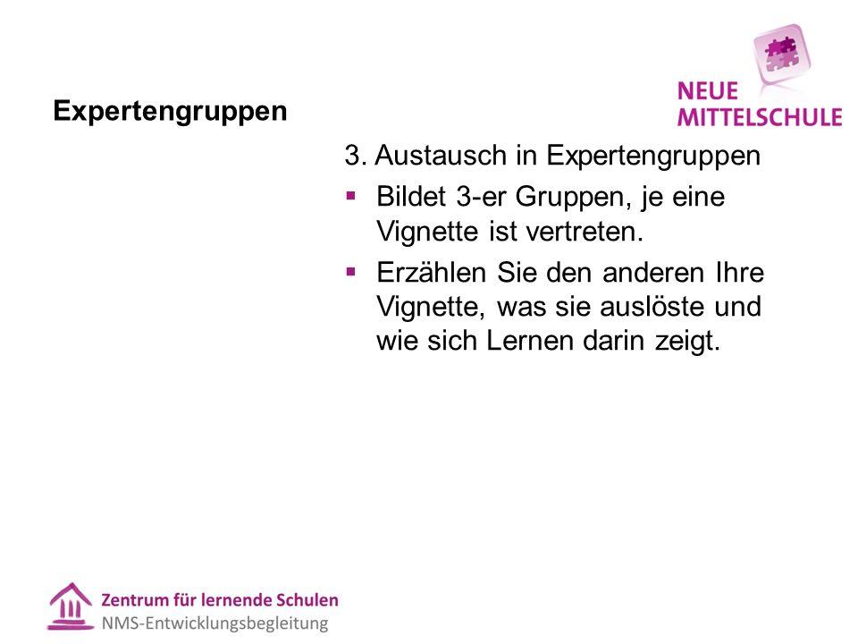 Expertengruppen 3.
