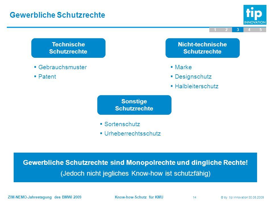 ZIM-NEMO-Jahrestagung des BMWi 2009 Know-how-Schutz für KMU 14 © by tip innovation 30.06.2009 Gewerbliche Schutzrechte 12345 Technische Schutzrechte 