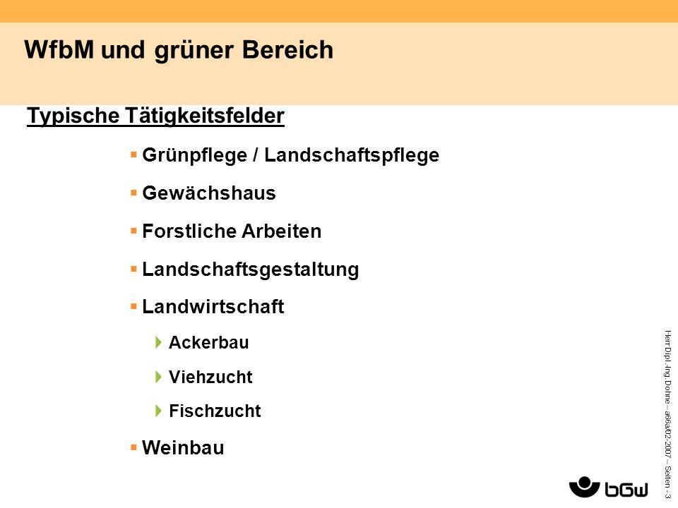 Herr Dipl.-Ing. Dohne – a66a/02-2007 – Seiten - 3 WfbM und grüner Bereich Typische Tätigkeitsfelder  Grünpflege / Landschaftspflege  Gewächshaus  F