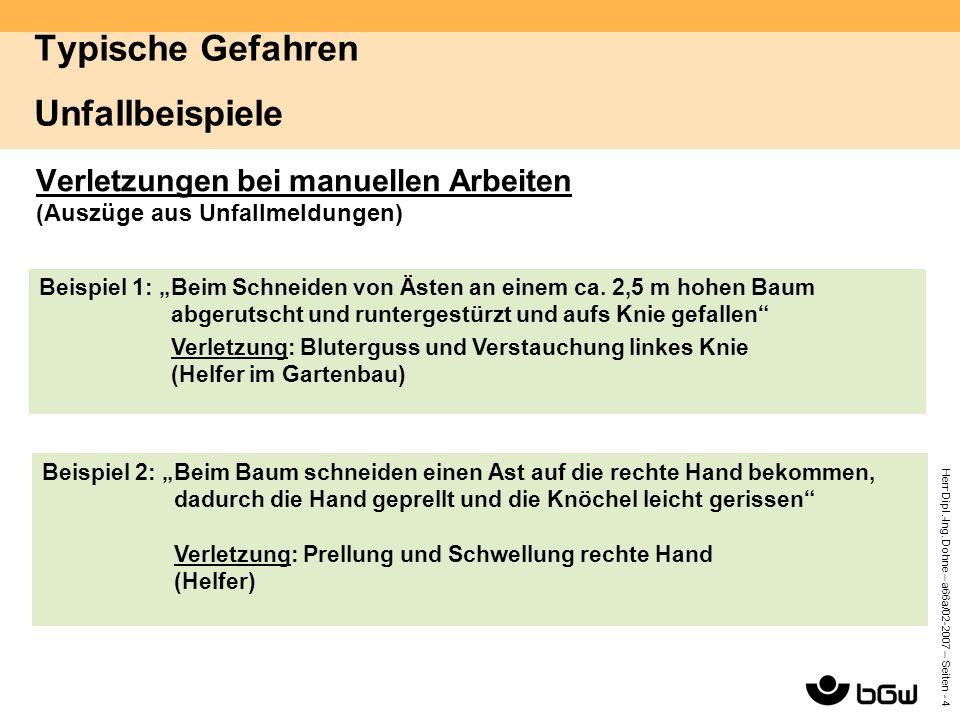 Herr Dipl.-Ing. Dohne – a66a/02-2007 – Seiten - 4 Typische Gefahren Unfallbeispiele Verletzungen bei manuellen Arbeiten (Auszüge aus Unfallmeldungen)